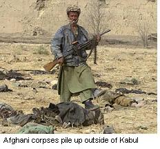 Kabul corpses